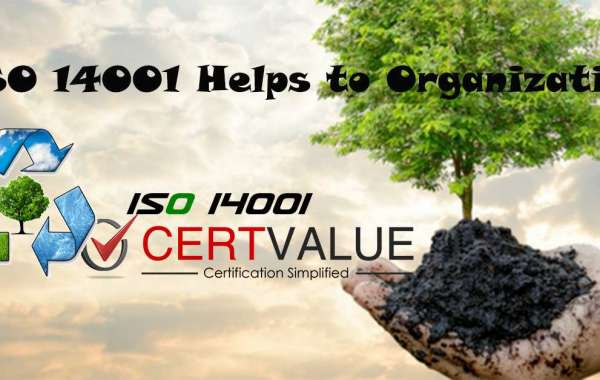 How to Allocate Roles and Responsibilities According to ISO 14001 Certification in Mumbai