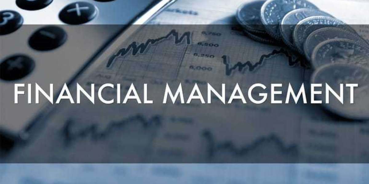Excellent Tips to Improve Your Financial Management to Get the Fruitful Result