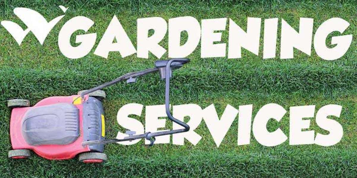 10 simple tips to maintain your beautiful garden