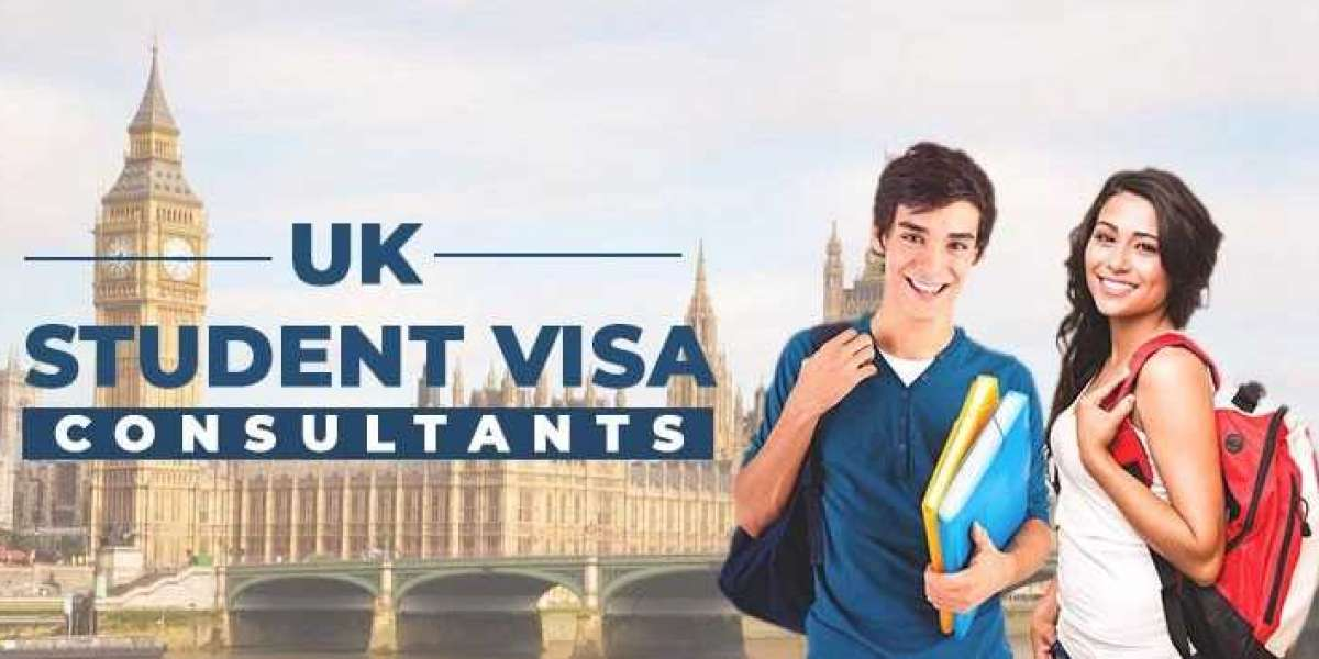 Why should you hire a visa consultant?