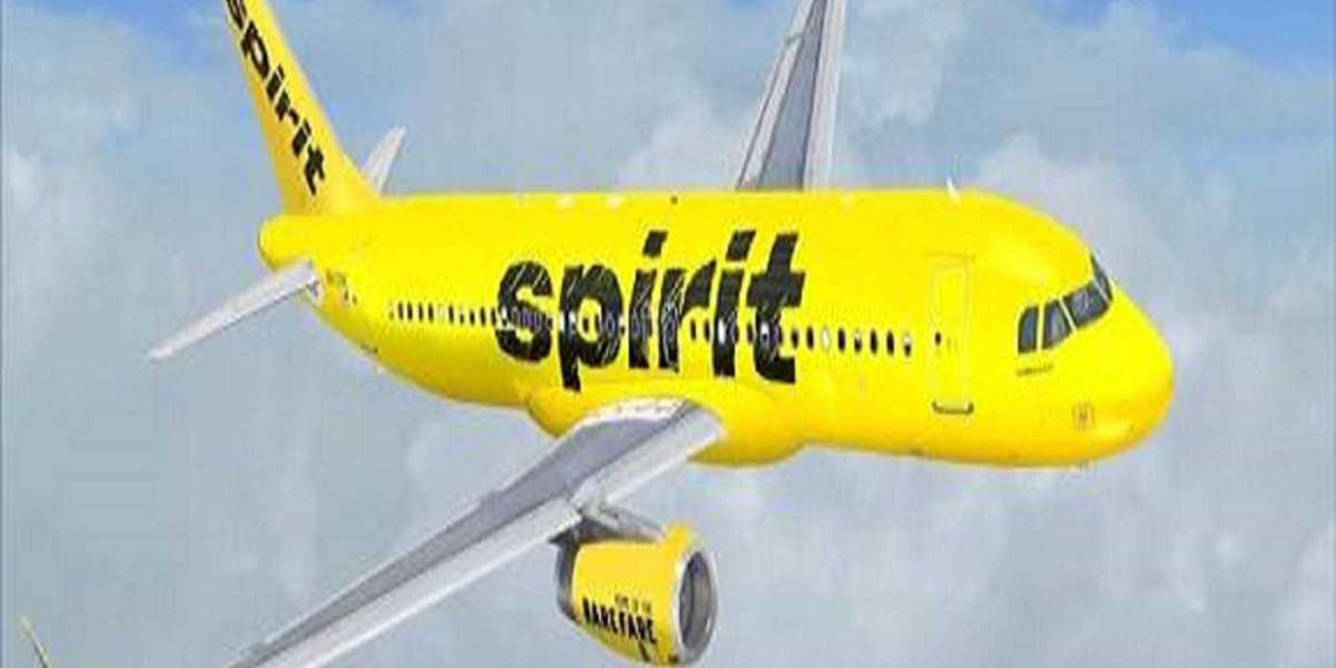 How do I check the flight status by Spirit Airlines Telefono?