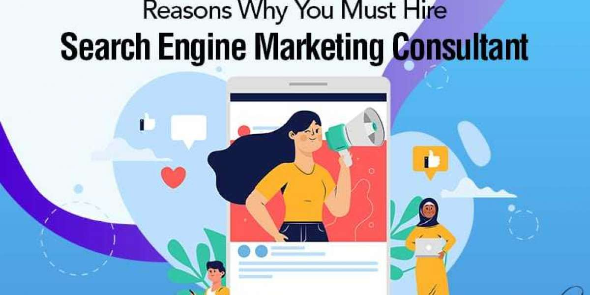 Search engine marketing consultant