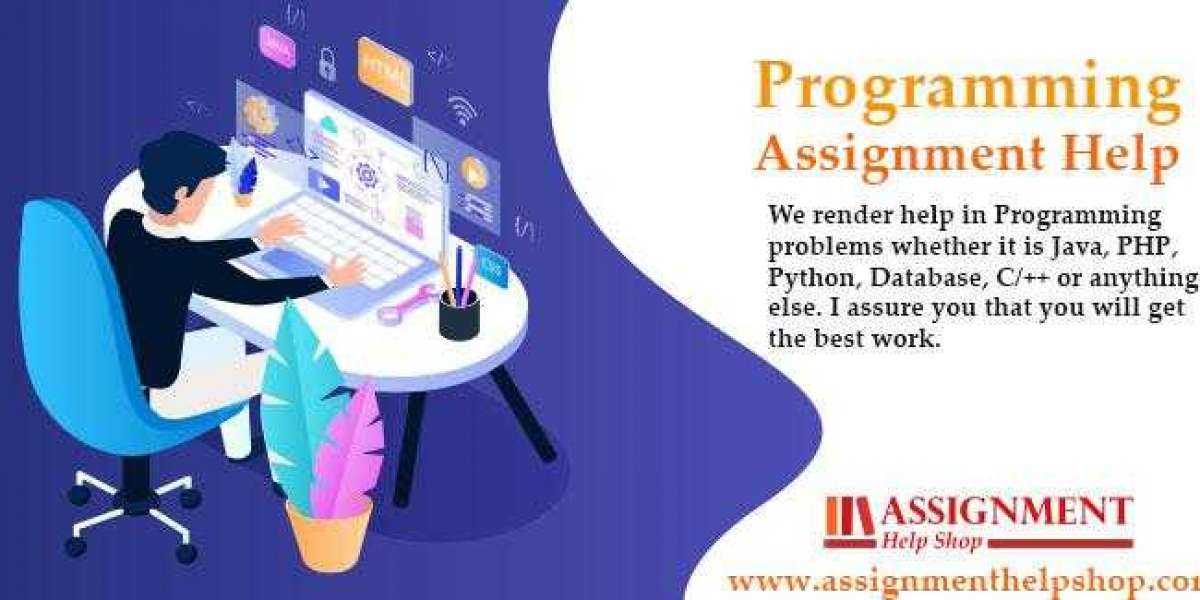 Why do Student seek help with their programming language assignment?