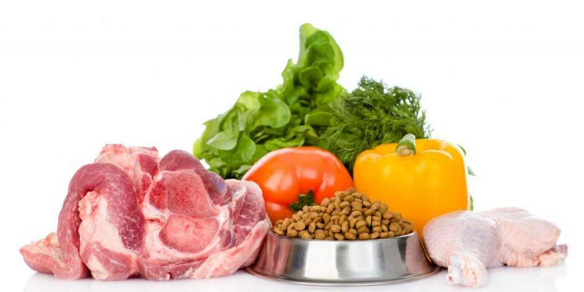 Pet Food - What Is The Best Food For Your Dog Or Cat?